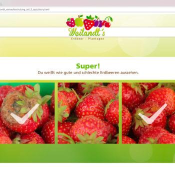 Hüppmeier Marketing und Design GmbH - Referenz - E-Learning - iPad - Weilandt´s Erdbeerplantagen Quiz 04