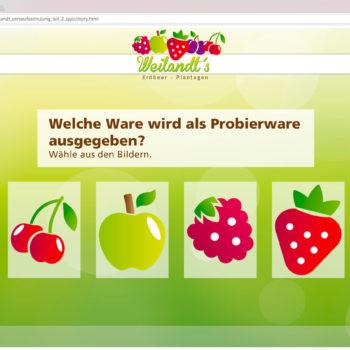 Hüppmeier Marketing und Design GmbH - Referenz - E-Learning - iPad - Weilandt´s Erdbeerplantagen Quiz 07