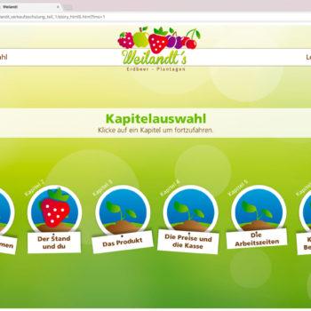 Hüppmeier Marketing und Design GmbH - Referenz - E-Learning - iPad - Weilandt´s Erdbeerplantagen 03