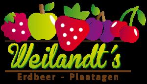 Hüppmeier Marketing und Design GmbH - Referenz - Logo Weilandt´s Erdbeerplantagen